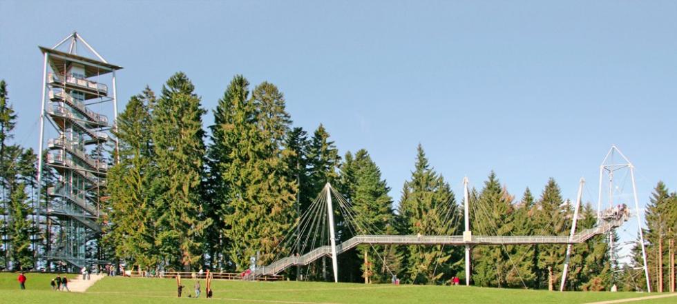 Sistema de atirantado BESISTA para la construcción de acera de las torres - Skywalk Scheidegg
